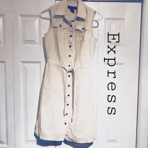 Express safari dress